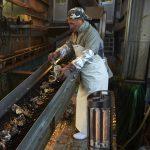 水産加工場での利用シーン
